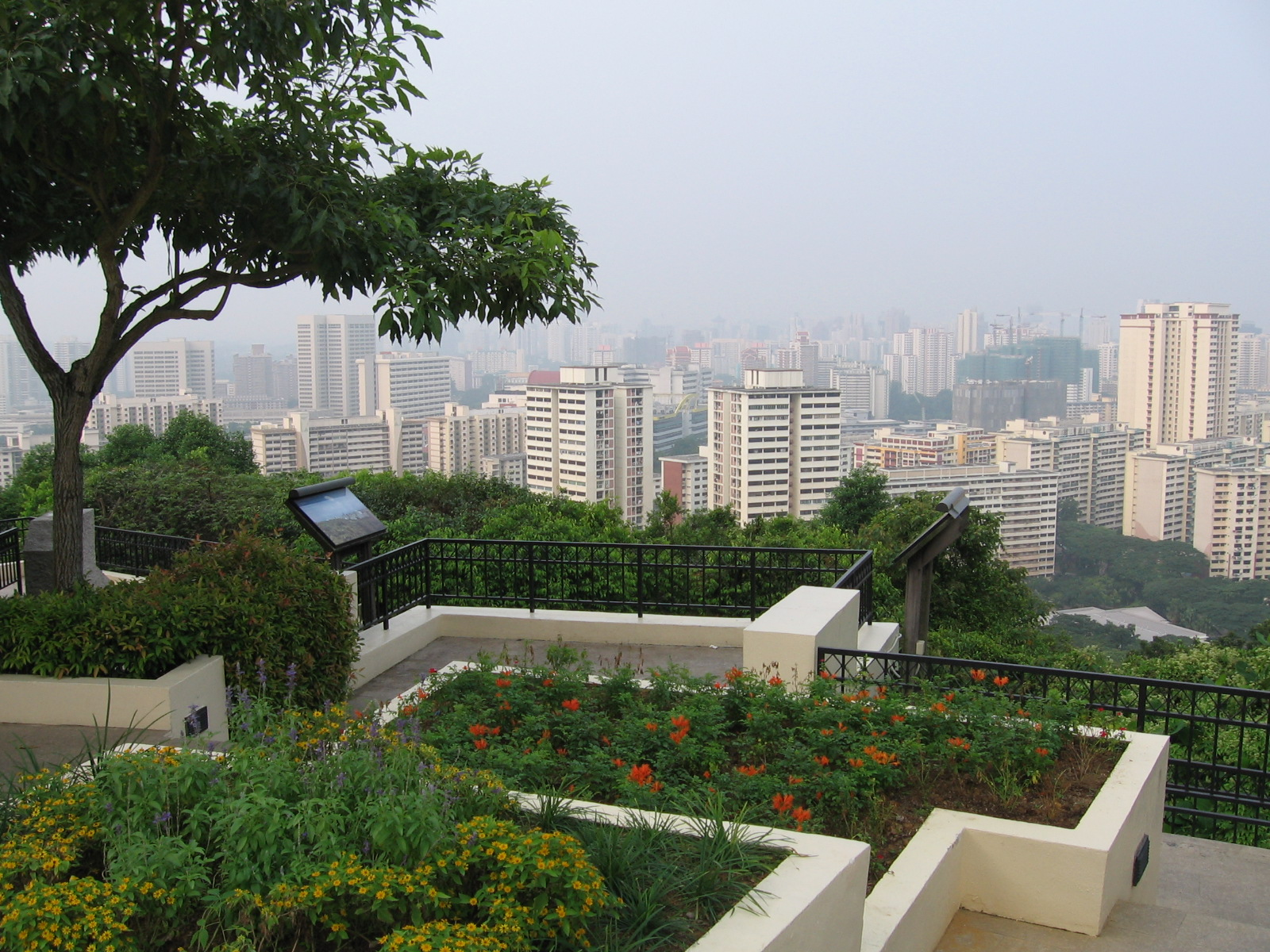 Mount Faber View