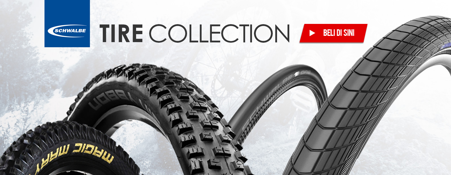 Schwalbe Tire Collection