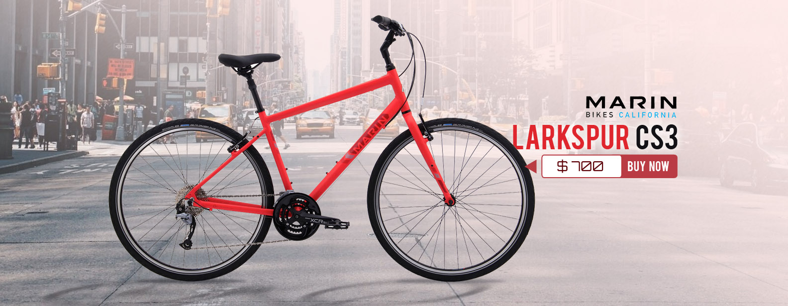 Marin Larkspur CS3 Bike