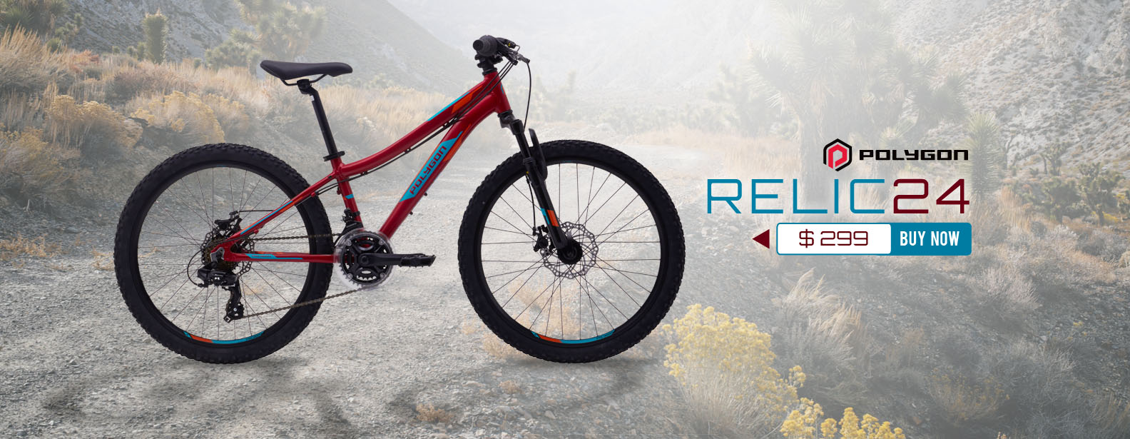 Polygon Relic Evo 24 Mountain Bike