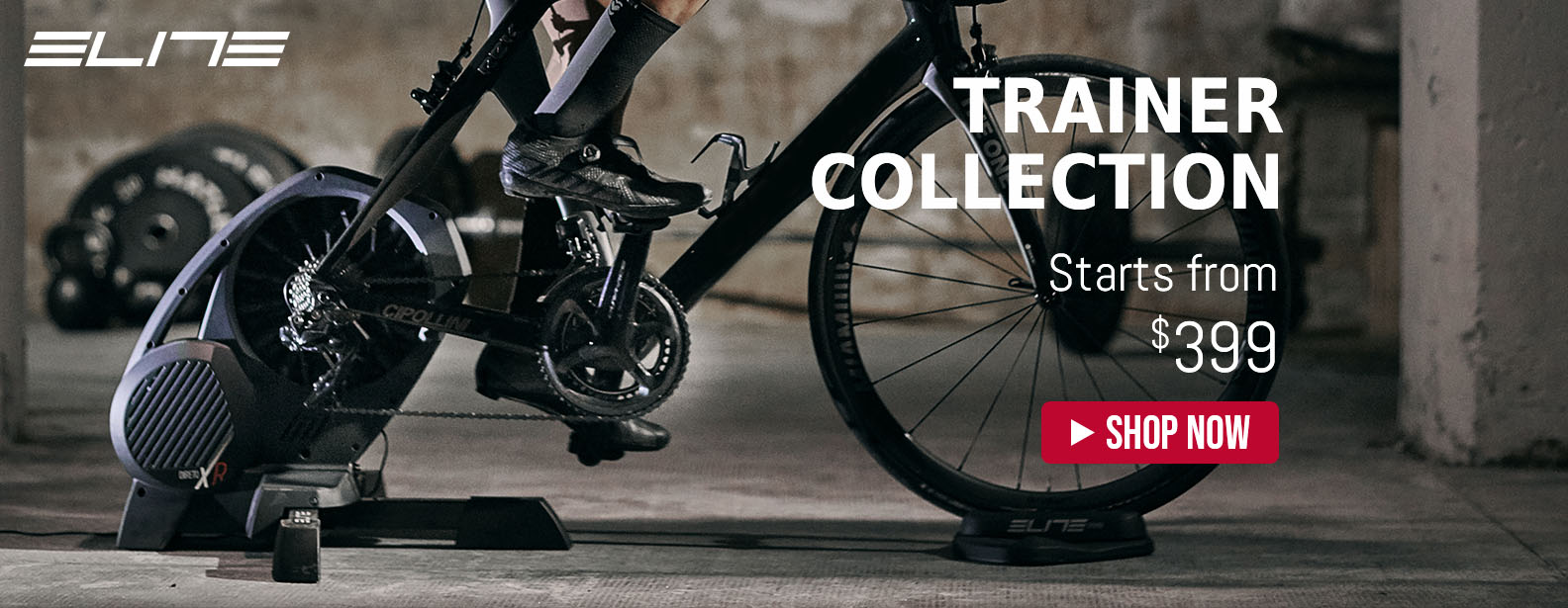 Elite Trainer New Collection